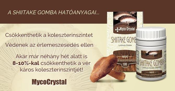 Shiitake gomba kapszula koleszterin ellen
