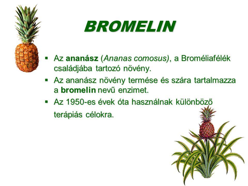 Bromelin Intenzyme kapszula 250db
