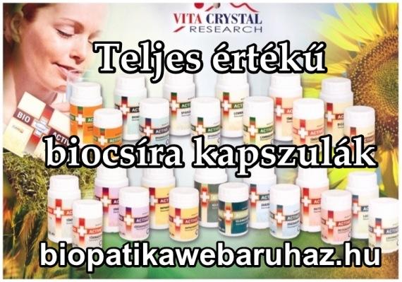 VITA+ACTIVE Lenmagcsíra vásárlás