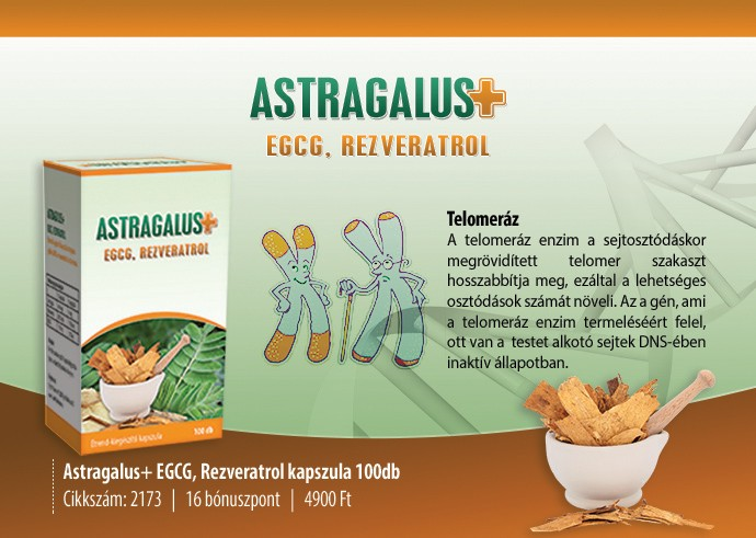 ASTRAGALUS (csüdfű-baktövis), EGCG REZVERATROL KAPSZULA 100 db