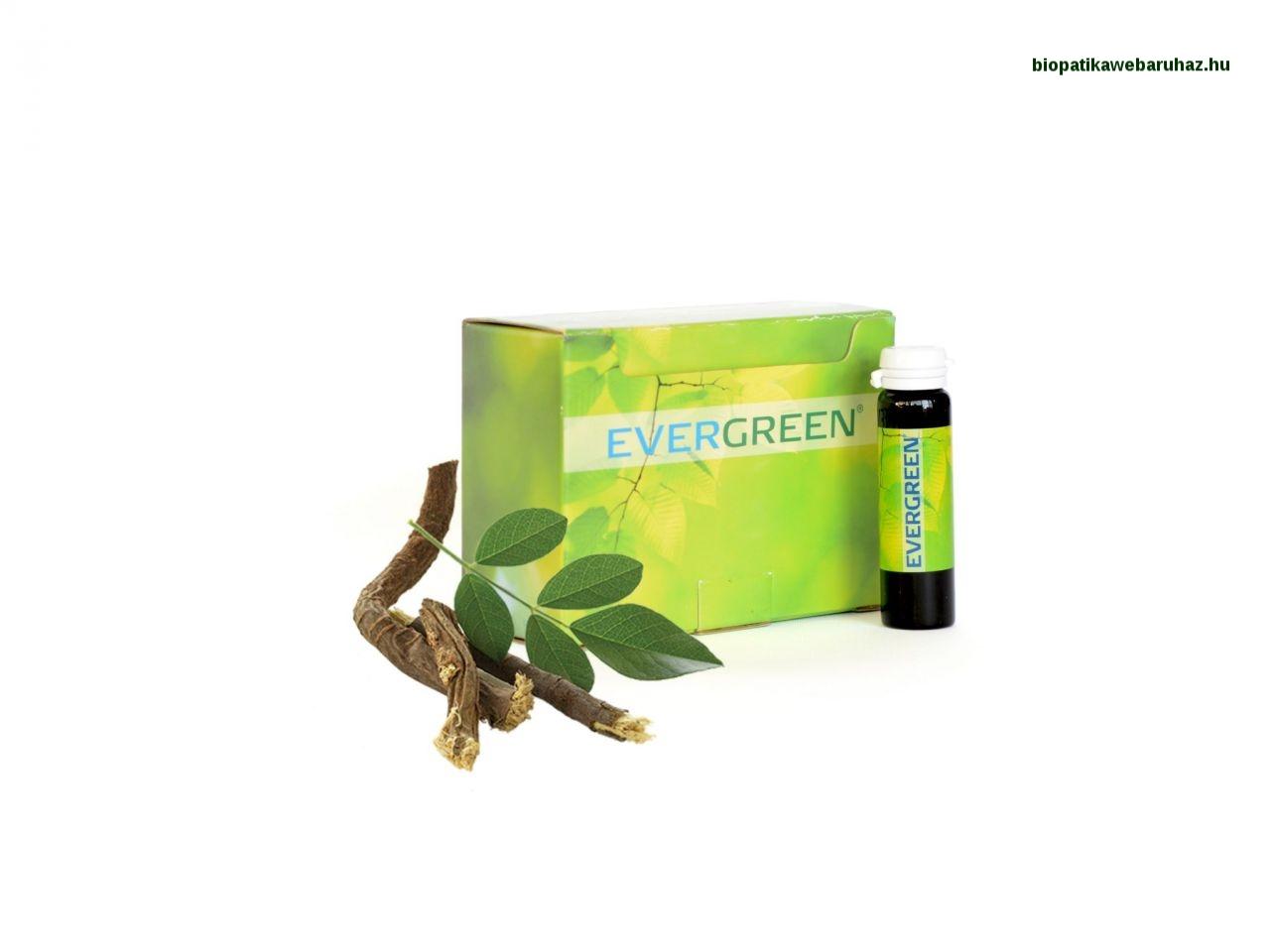Sunrider Evergreen – Klorofillbomba